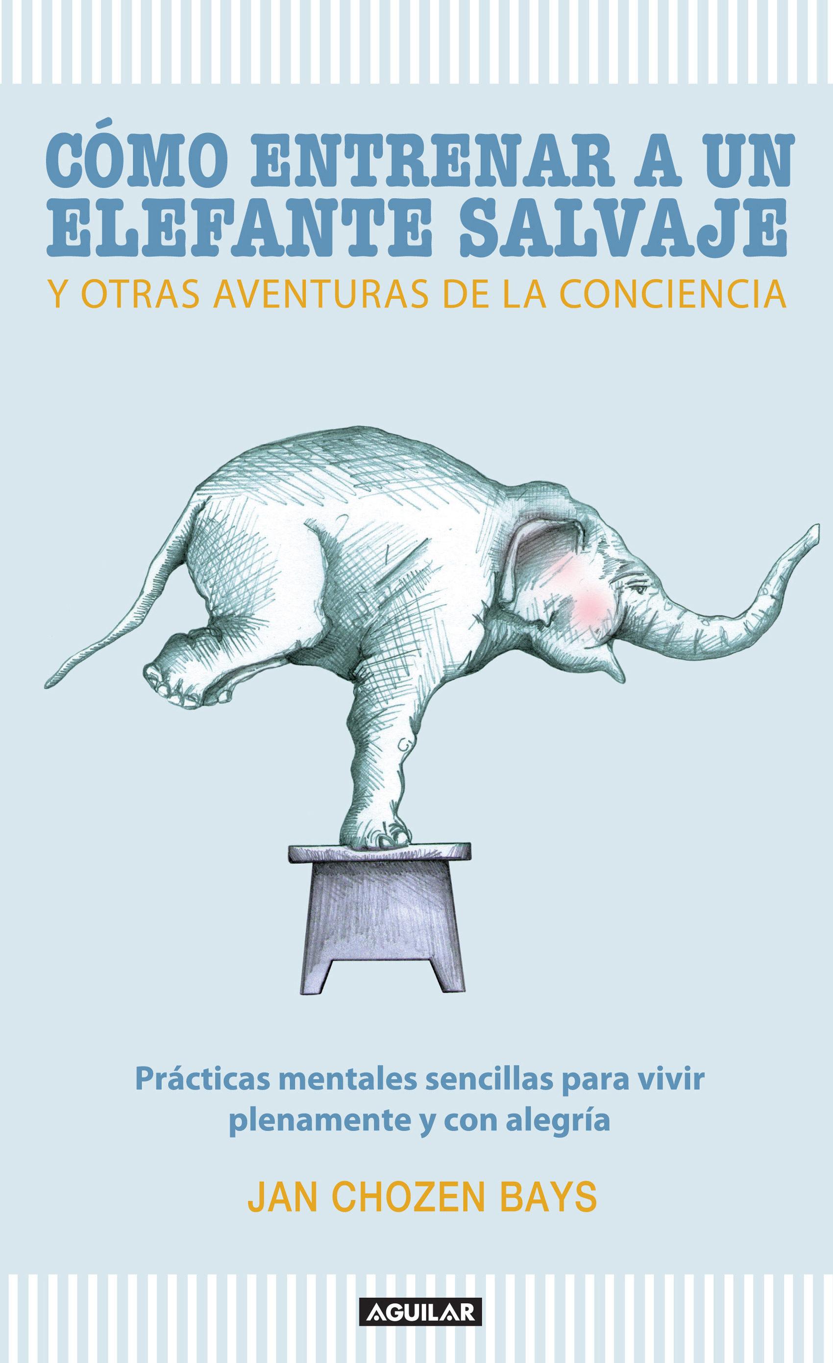 Cómo Entrenar A Un Elefante Salvaje Y Otras Aventuras De La Conciencia   por Jan Chozen Bay