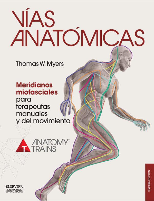 Vías Anatómicas. Meridianos Miofasciales Para Terapeutas Manuales Y Del Movimiento   por Thomas W. Myers