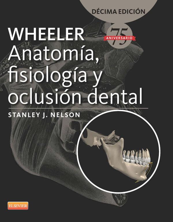 WHEELER. ANATOMÍA, FISIOLOGÍA Y OCLUSIÓN DENTAL EBOOK | S. J. NELSON ...