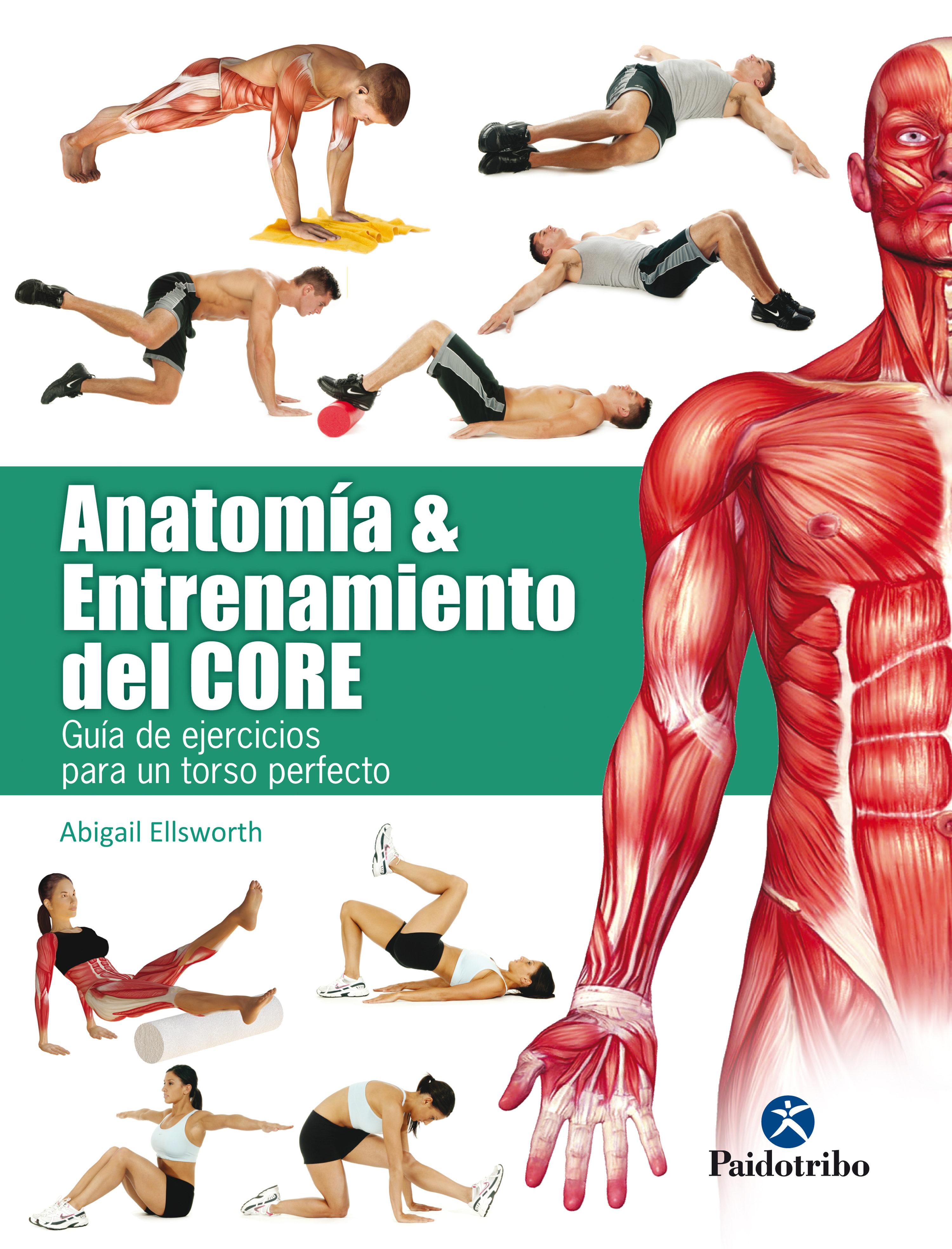 ANATOMÍA Y ENTRENAMIENTO DEL CORE. EBOOK | ABIGAIL ELLSWORTH ...