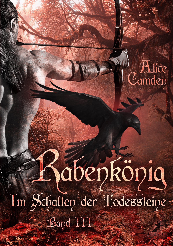 Im Schatten Der Todessteine 3: Rabenkönig Descargar PDF