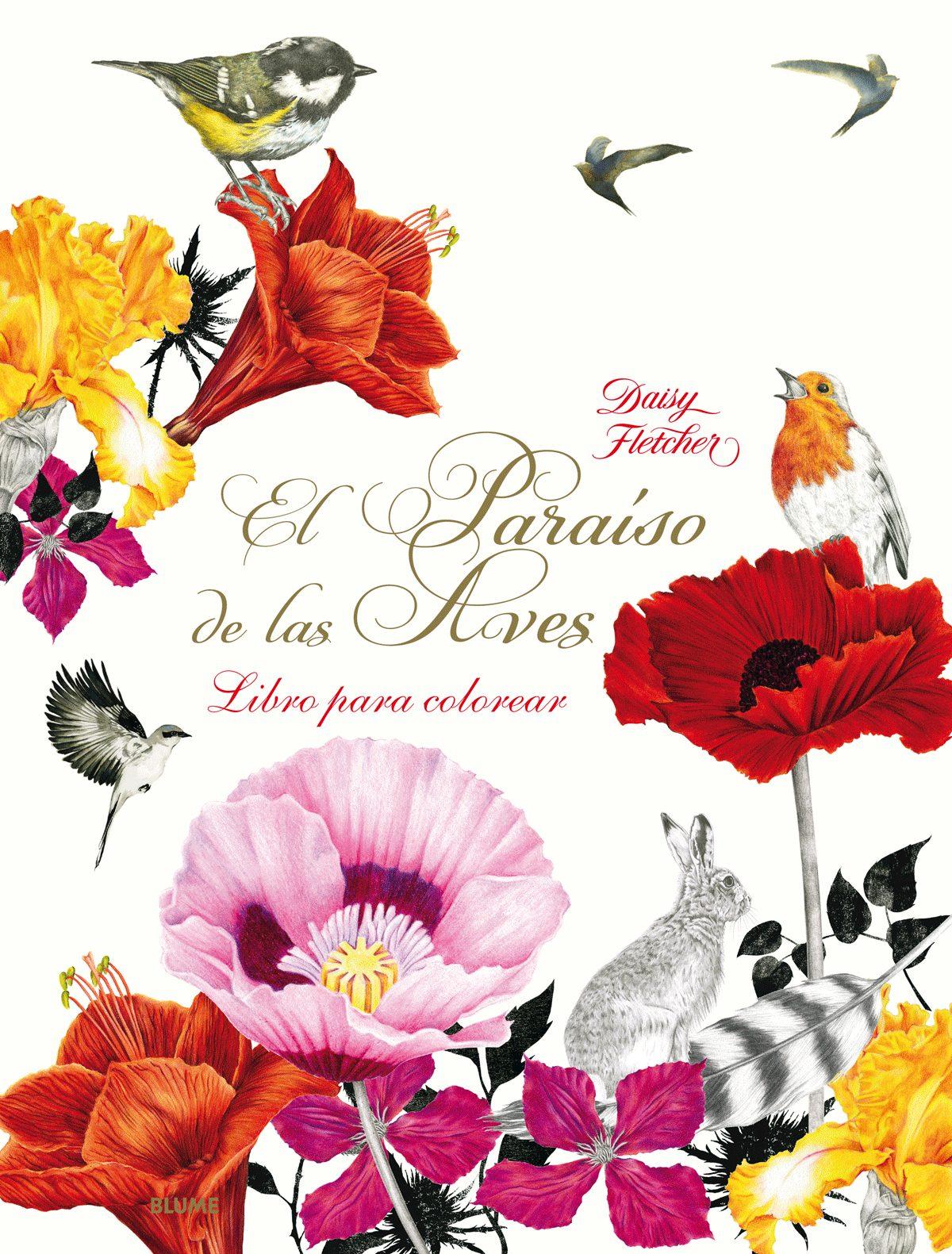 PARAISO DE LAS AVES: UN LIBRO PARA COLOREAR   DAISY FLETCHER ...