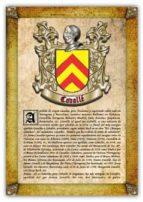 apellido cavallé / origen, historia y heráldica de los linajes y apellidos españoles e hispanoamericanos (ebook)-antonio tapia-cdlhf00013508