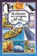diccionario por imagenes del mar-m.r. pimont-9782215066118