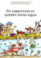 els capgrossos es queden sense aigua pilarin bayes adelina palacin assumpta verdaguer 9788476028018