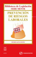 prevencion de riesgos laborales (14ª ed.)-9788447037438