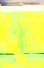 el mago merlin: biografia-evelyne lopez campillo-9788495642158