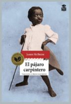 el pajaro carpintero james mcbride 9788416537198