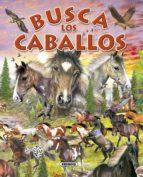busca los caballos y ponis 9788430557998