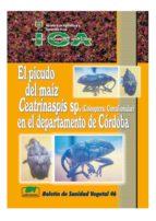 EL PICUDO DEL MAÍZ CEATRINASPIS SP. (COLEOPTERA: CURCULIONIDAE) EN EL DEPARTAMENTO DE CÓRDOBA