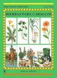 HIERBAS PARA CABALLOS (GUIAS ECUESTRES ILUSTRADAS) - 9788425513718 - JENNY MORGAN