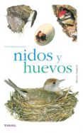 NIDOS Y HUEVOS (NATURALEZA - AVES) - 9788430552528 - VV.AA.