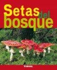 SETAS DEL BOSQUE - 9788492678778 - VV.AA.