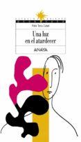 UNA LUZ EN EL ATARDECER (2ª ED.) - 9788420790688 - FELIX TEIRA CUBEL