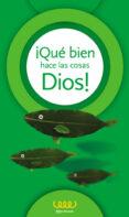 ¡QUÉ BIEN HACE LAS COSAS DIOS! (5º PRIMARIA) - 9788481698688 - VV.AA.