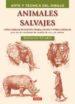ANIMALES SALVAJES - ARTE Y TECNICA DEL DIBUJO GIOVANNI CIVARDI