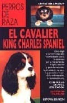 Ironbikepuglia.it El Cavalier King Charles Spaniel Image