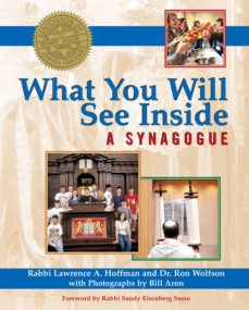 what you will see inside a synagogue (ebook)-phd, rabbi lawrence a. hoffman-dr. ron wolfson-9781594735028