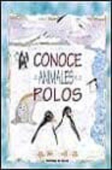 Debatecd.mx Conoce A Los Animales De Los Polos Image