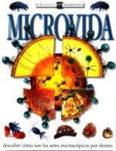 Eldeportedealbacete.es Microvida Image
