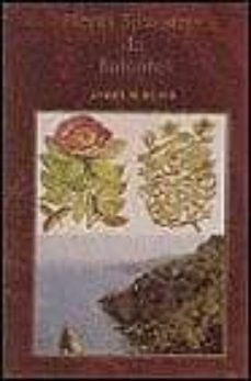 Concursopiedraspreciosas.es Flores Silvestres De Baleares Image
