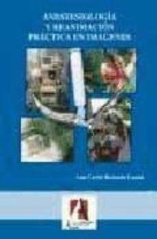 Descarga gratuita de libros electrónicos para smartphone ANESTESIOLOGIA Y REANIMACION PRACTICA EN IMAGENES CHM PDB de LUIS CARLOS REDONDO CASTAN 9788496224438