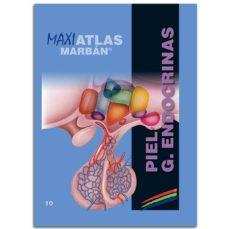 Descarga gratuita de libros electrónicos leídos en línea PIEL - G. ENDOCRINAS (MAXI ATLAS 10) PDF PDB de