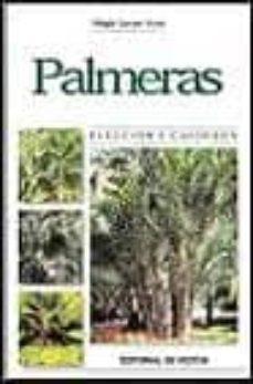 Debatecd.mx Palmeras: Eleccion Y Cuidados Image