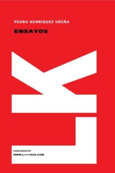 Inmaswan.es Ensayos Image