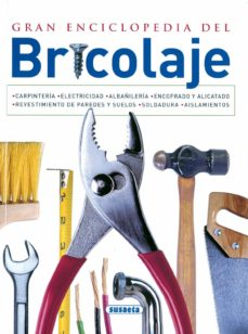 Descargas de libros gratis torrents GRAN ENCICLOPEDIA DE BRICOLAJE (AZUL) de  RTF ePub PDF (Spanish Edition) 9788430535958