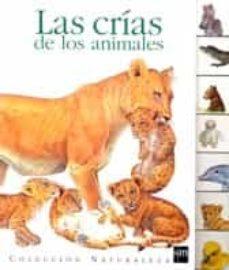 Permacultivo.es Las Crias De Los Animales Image