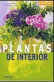 Inciertagloria.es Plantas De Interior Image