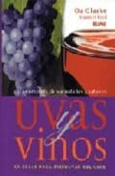 Geekmag.es Uvas Y Vinos: La Clave Para Disfrutar Del Vino Image