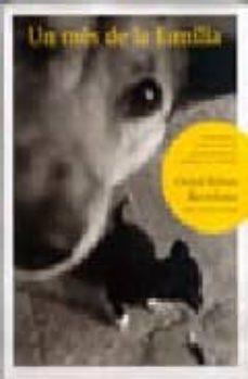 Viamistica.es Un Mes De La Familia: Comprendre El Comportament Del Gos Per Prev Enir Els Problemes Mes Habituals Image