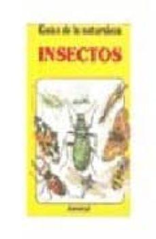 Upgrade6a.es Insectos Image