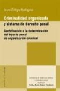 Descargar CRIMINALIDAD ORGANIZADA Y SISTEMA DE DERECHO PENAL: CONTRIBUCION A LA DETERMINACION DEL INJUSTO PENAL DE ORGANIZACION CRIMINAL gratis pdf - leer online